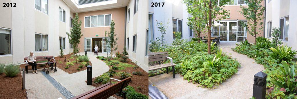 Mt Gambier courtyard 2012-2017 comparison