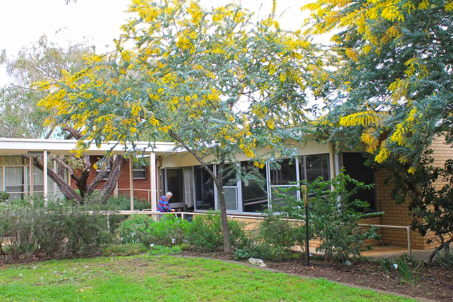 Aged Care Westbourne Park Resthaven